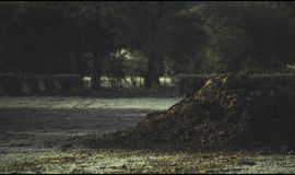 Midden Mound in Frosty Field Royalty Free Stock Image