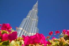 Midden-Oosten, Verenigde Arabische Emiraten, Doubai, Van de binnenstad, Burj Khalifa Stock Fotografie