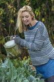 Midden Oude Vrouw Plantaardige het Tuinieren Gieter Stock Afbeelding
