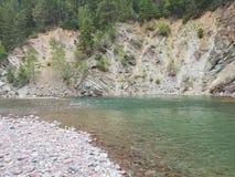 Middenvork van rivier met platte kop Stock Afbeelding