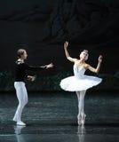 Middernacht terug in een het oever van het meer-Ballet van Ojta-The Swan van de zwaanprinses Zwaanmeer dat wordt veranderd Stock Foto
