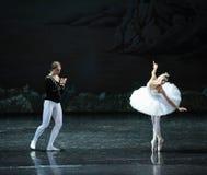 Middernacht terug in een het oever van het meer-Ballet van Ojta-The Swan van de zwaanprinses Zwaanmeer dat wordt veranderd stock fotografie