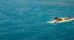 Middl age surfer man swimming in the open ocean. Male surfer floating on his surfboard in the waves of clean bight water, surfer man paddles out through the royalty free stock images