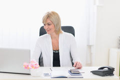 Middle age business woman working at office Royalty Free Stock Images