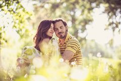 Middle age couple share tender. Spring season. Beauty in nature stock photo