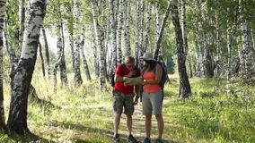 Middle age hikers couple trekking in a birch wood. Exploring map stock video footage