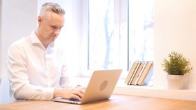 Middle Age Man Working on Laptop, Designer. High quality stock photos