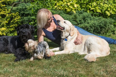Middle age woman with dogs on the lawn Stock Images