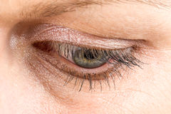Middle age woman eye macro Stock Image