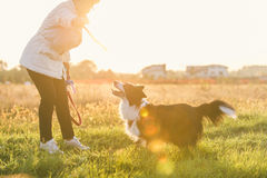 Middle age woman playing with her dog Stock Photos
