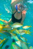 Middle age woman snorkeling in Cuba royalty free stock image