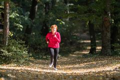 Middle age woman wearing sportswear and running in forest royalty free stock image