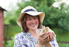 Middle age woman with yellow ducklings Royalty Free Stock Photo