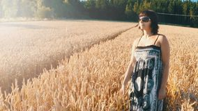 Middle aged beauty woman in a summer dress relaxing in countryside. And touching the golden wheat with her handm tranquil scene, summer concept, slow motion stock video footage