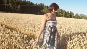 Middle aged beauty woman in a summer dress walking in countryside. And touching the golden wheat with her handm tranquil scene, summer concept, slow motion stock footage