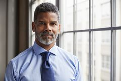 Middle aged black businessman looking to camera stock image