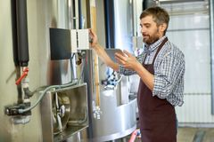 Middle-Aged Brewer Focused on Work royalty free stock photography