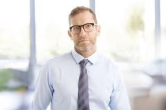 Middle aged businessman at the office Royalty Free Stock Image