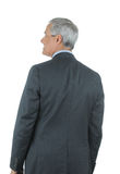 Middle aged Businessman seen from behind Royalty Free Stock Images