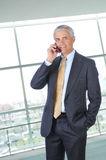 Middle aged Businessman Talking on Cell Phone Royalty Free Stock Photo