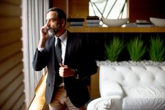 Middle-aged businessman using mobile phone Royalty Free Stock Image