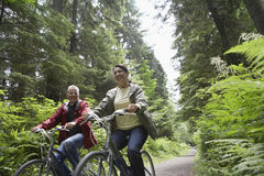 Middle Aged Couple With Bikes In Forest  Royalty Free Stock Image