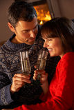 Middle Aged Couple  With Glass Of Champagne Royalty Free Stock Photography