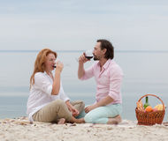 Middle-aged couple in picnic Stock Images