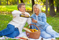 Middle aged couple on a picnic Stock Images