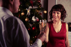 Middle-aged couple smiling lovingly while toasting with champagn Royalty Free Stock Image