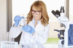 Female doctor working in chemistry laboratory Stock Photos