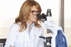 Female doctor in scientific laboratory Stock Photos