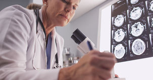 Middle aged female radiologist looking through microscope Royalty Free Stock Photo