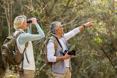 Middle aged hikers Stock Image
