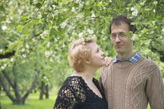 Middle aged husband and wife in blooming apple trees garden. Royalty Free Stock Photography