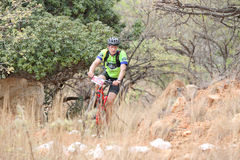 Middle aged male riding through bush at Mountain Bike Race Royalty Free Stock Image