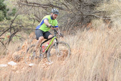 Middle aged male riding through bush at Mountain Bike Race Stock Images