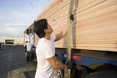 Middle Aged Male Worker Pulling Trailer Belt. After loading wooden planks Royalty Free Stock Photo