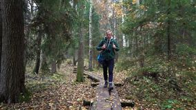 Middle aged man on an ecological nature trail through an autumn forest in a natural park. A middle-aged man with a backpack walking along an ecological natural stock footage