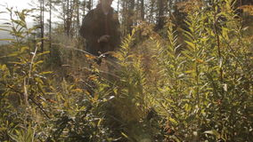 A middle aged man with a beard and a backpack taking pictures of the greenery and flowers with a smartphone on a glade stock video