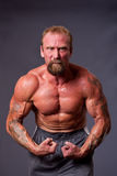 Middle aged man body builder stock images