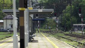 A man with a dog crosses the rails on a train station in summer in slo-mo. A middle aged man with a dog crosses the rails on a train station in summer in slow stock footage