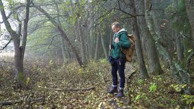 Middle aged man on an ecological nature trail through an autumn forest in a natural park. A middle-aged man with a backpack walks along an ecological natural stock video footage