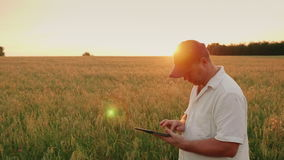 Middle-aged man farmer working on the field. It uses a digital tablet. Evening at sunset