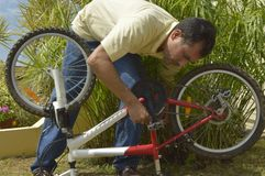 Middle-aged man repairing a bicycle. Royalty Free Stock Photo