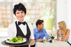 Middle aged waitress Stock Photos