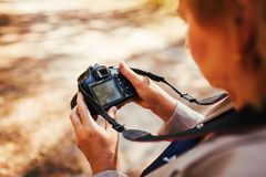 Middle-aged woman checking images on camera in autumn forest. Senior woman walking and enjoying hobby. Middle-aged woman checking images on camera in autumn royalty free stock image
