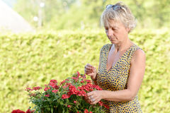 A middle-aged woman with a flowering plant stock photo