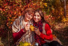 Middle-aged woman and her daughter having tea in the forest. Middle-aged women and her daughter having tea in autumn forest Stock Image