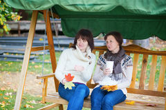 Middle aged woman with her daughter on a swing Royalty Free Stock Images